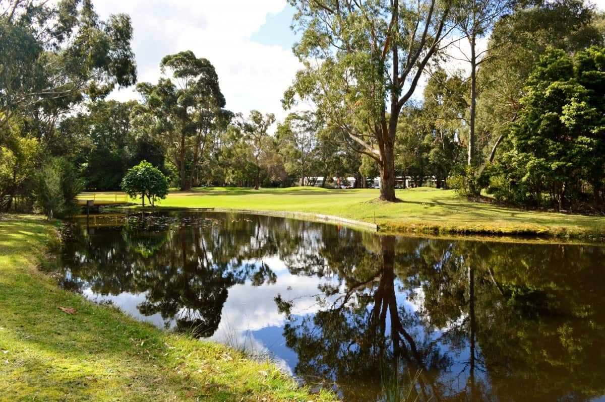 foster golf club lake